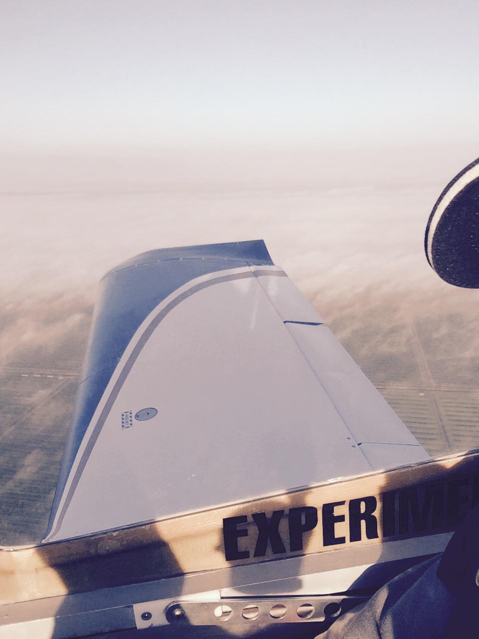 BD-17L Wing view
